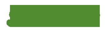 Travellins Logo